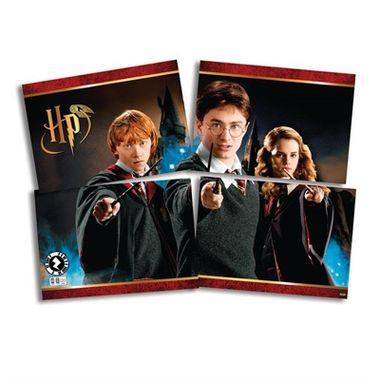 Painel-Harry-Potter---4-laminas---unidade